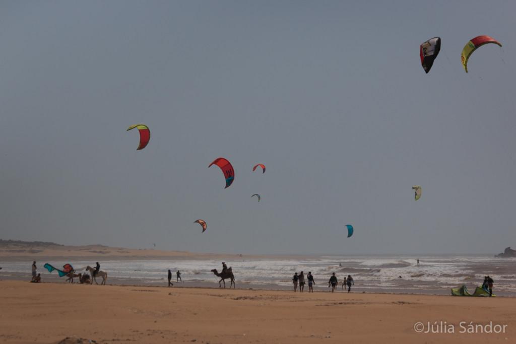 Beach in Essaouira, Morocco