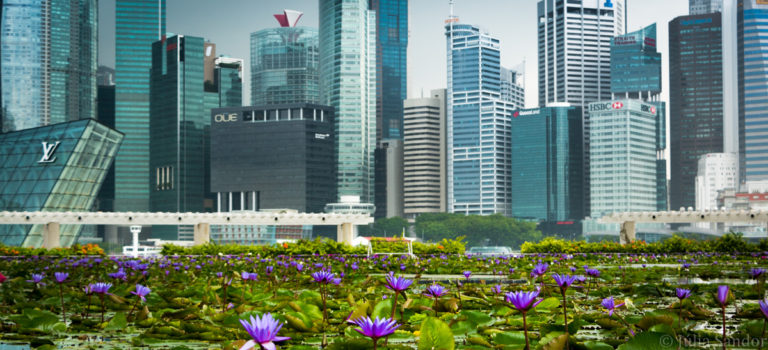 Singapore: strong contrast to the rest of Southeast Asia