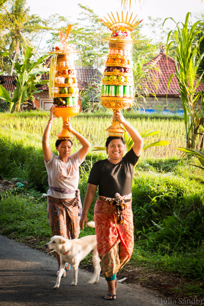 Faces of Asia: Balinese women carrying offerings