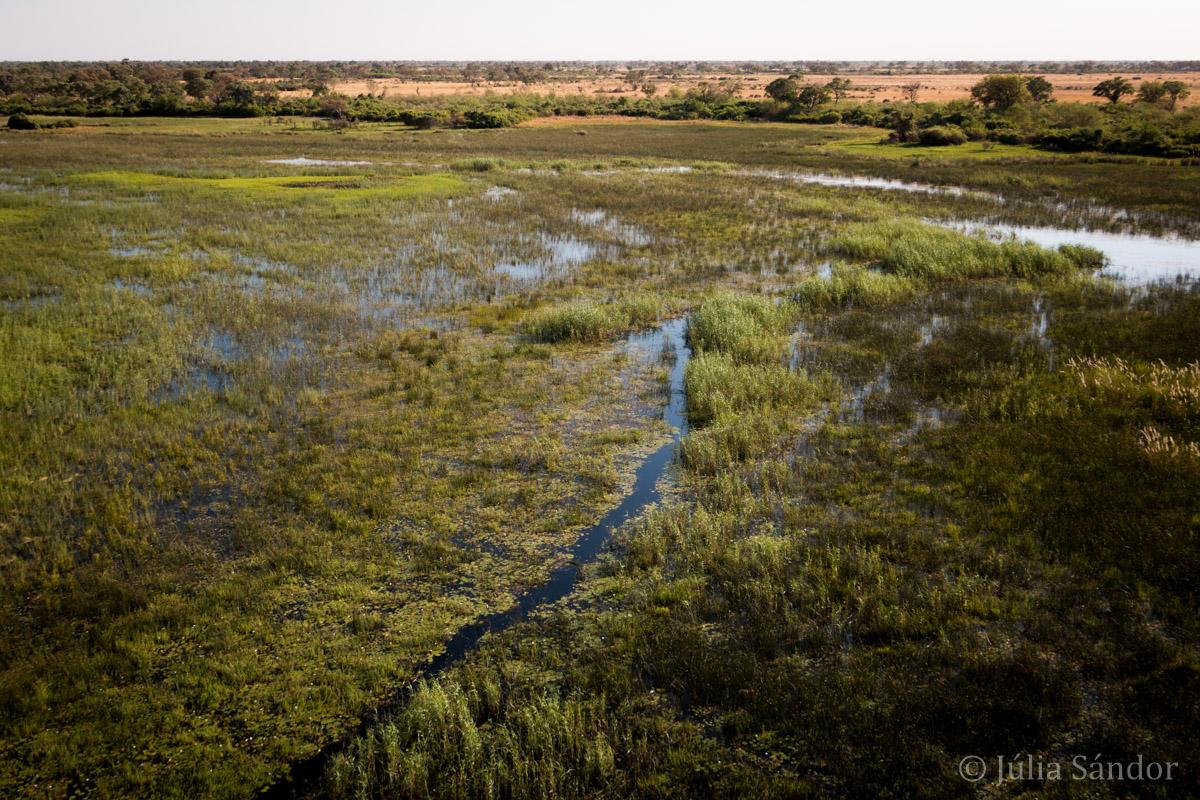 Botswana, Okavango delta view