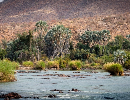 Epupa – Oasis in the North of Namibia