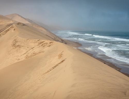 Where the Red Dunes meet the Blue Ocean